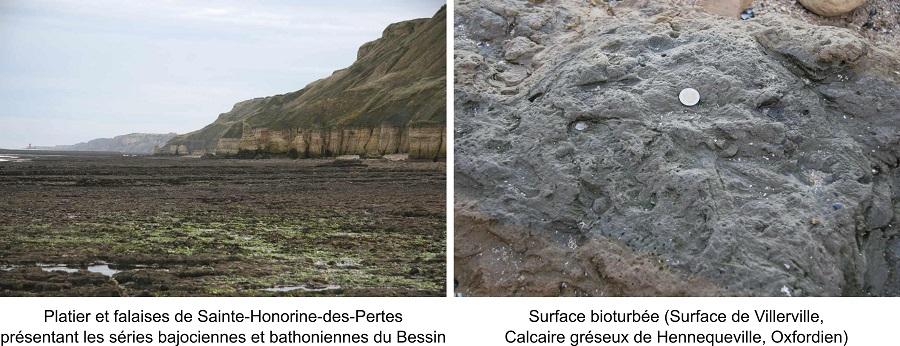 Le Jurassique de la Normandie